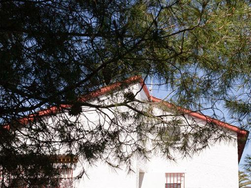 Rehabilitación de vivienda unifamiliar. Familia De La Torre.